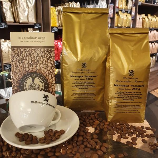 Nicaragua Pacamara Filterkaffee